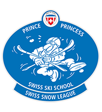 prince_bleu_ski
